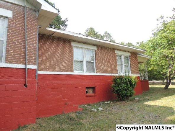 4665 County Rd. 7, Leesburg, AL 35983 Photo 50
