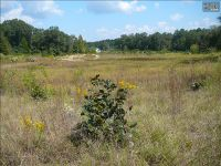 Home for sale: 1694-2 Hwy. 1 S., Lugoff, SC 29078
