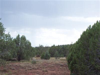 1805 W. Cumberland Parcel J Rd., Ash Fork, AZ 86320 Photo 14
