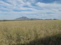 Home for sale: Tbd Apache Sky Rd., Hereford, AZ 85615