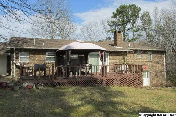 385 Skyhaven Dr., Boaz, AL 35956 Photo 12