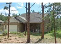 Home for sale: 1102 Ptarmigan Dr., Woodland Park, CO 80863