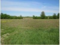 Home for sale: Lot 2 Hwy. F, Berlin, WI 54923