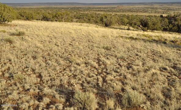 297 Woodridge Ranch, Concho, AZ 85924 Photo 12