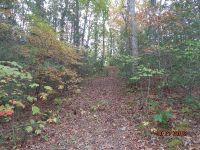 Home for sale: N./A Brigsy Ln., Whittier, NC 28789