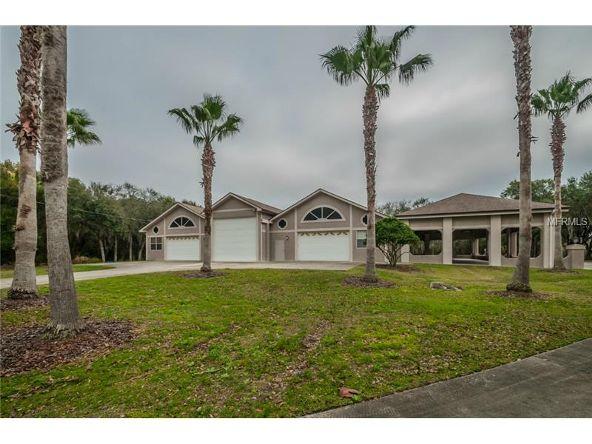 2270 N. Highland Avenue, Tarpon Springs, FL 34688 Photo 2