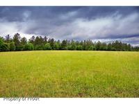 Home for sale: Tbd Yukon Dr., Gulf, NC 27252