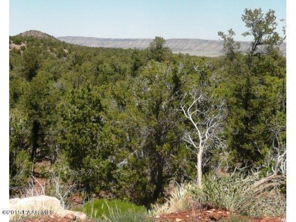 1024 Sierra Verde Ranch, Seligman, AZ 86337 Photo 14