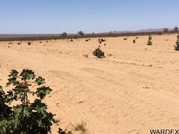 2537 E. Red Barrel Dr., Yucca, AZ 86438 Photo 18