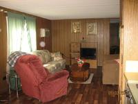 Home for sale: 13050 N.E. 250th Ct., Salt Springs, FL 32134