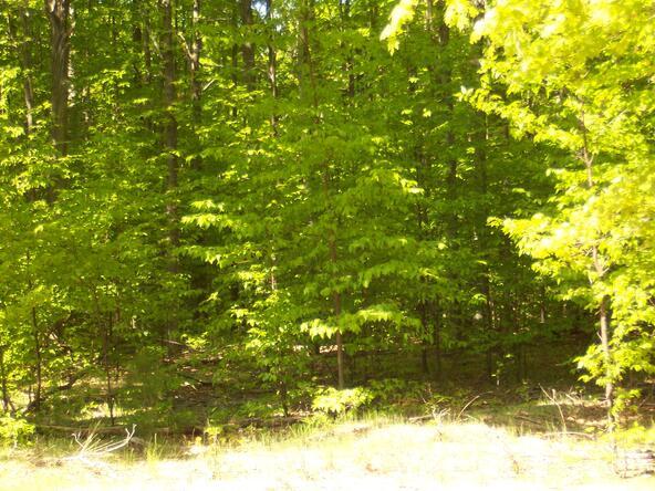 Weaver Rd. Lot A, Fairview, MI 48621 Photo 12