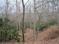 Home for sale: Lot 1&2 Dundee Ln., Pisgah Forest, NC 28768