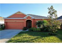 Home for sale: 10841 79th St. E., Parrish, FL 34219