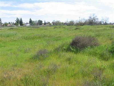 3325 W. Clinton Avenue, Fresno, CA 93722 Photo 6
