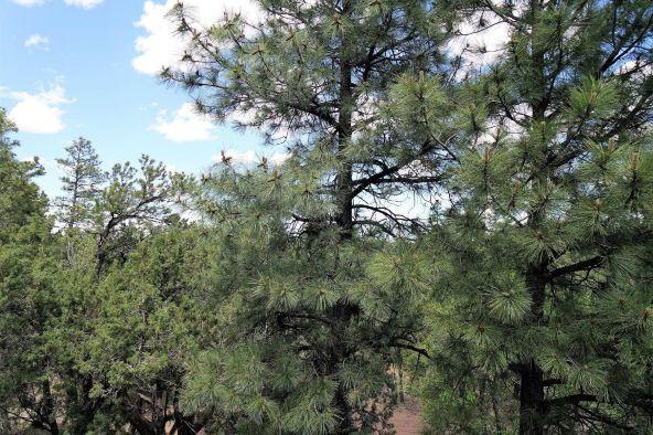 560 W. Aspen Trail, Show Low, AZ 85901 Photo 38