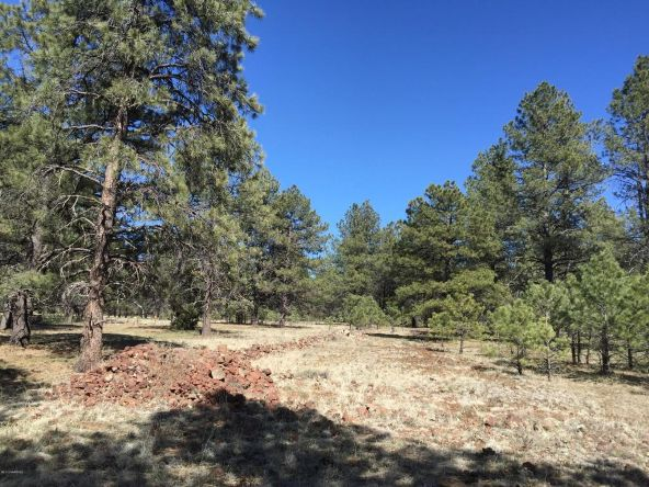 3602 E. Mountain Man Trail, Williams, AZ 86046 Photo 27