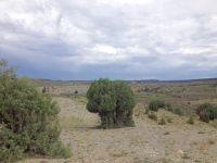 Home for sale: Unit 11, Lot 33, Rachos del Vado, Tierra Amarilla, NM 87551