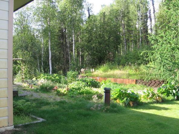 10425 N. Hardship Ln., Willow, AK 99688 Photo 82