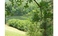 Home for sale: Lt 15 Old Birch Bend, Blairsville, GA 30512