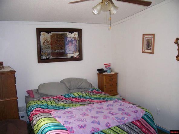 100 Wren Rd., Gepp, AR 72538 Photo 5