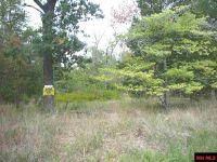 Home for sale: Lt 17 Lakeshore Rd., Bull Shoals, AR 72619