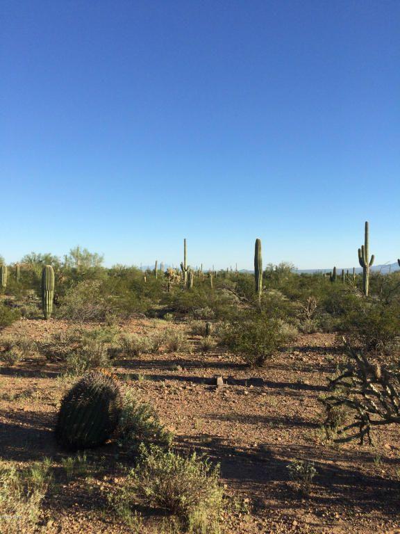 11715 Tortoise Trail, Tucson, AZ 85743 Photo 5