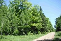 Home for sale: Wegner Rd., Merrill, WI 54452