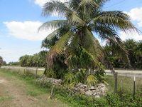 Home for sale: Access Undetermined - Stringfellow, Bokeelia, FL 33922