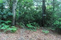 Home for sale: Lot#16 Whispering Springs Ln., Nantahala, NC 28781