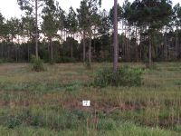 Home for sale: Lot 2 Indigo Ln., Jesup, GA 31545