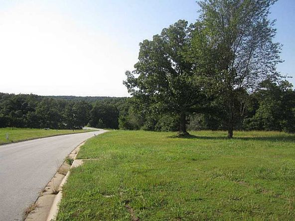 10 Lots Dogwood Canyon Loop, Fayetteville, AR 72704 Photo 3