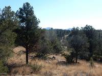 Home for sale: 15102 N. Hootenanny Rd., Prescott, AZ 86305