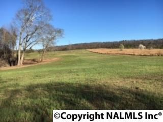 4503 Mccourt Rd., Walnut Grove, AL 35952 Photo 11