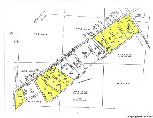10 County Rd. 67, Langston, AL 35755 Photo 2