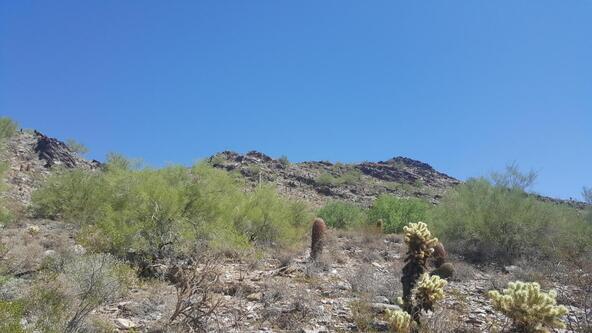 21039 N. 102nd St., Scottsdale, AZ 85255 Photo 13