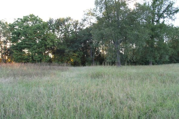2 del Ware Ln., Delaware, AR 72835 Photo 1