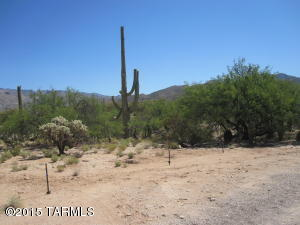 3470 N. Soldier Trail, Tucson, AZ 85749 Photo 14