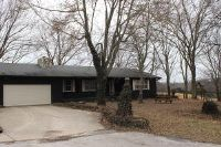 Home for sale: 366 Haynes Dr., Sparta, MO 65753