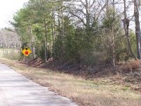 Home for sale: 0 County Rd. 4, Columbia, AL 36319