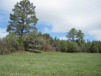 Home for sale: Lot 1 Section 17, 20, Tn 26 N., Rg 05e, Canjilon, NM 87515