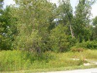 Home for sale: 0 Range Rd., Smiths Creek, MI 48074