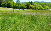 Home for sale: Old Hwy. 76, Morganton, GA 30560
