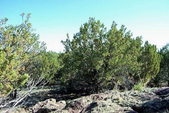 1419 W. Maverick Ln., Williams, AZ 86046 Photo 14