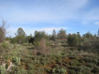 Home for sale: Lot #3 Deer Park Ln., Oak Run, CA 96069