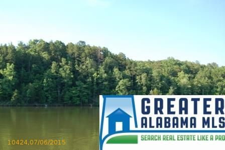 6 Rock Creek Co Rd. 4312, Wedowee, AL 36278 Photo 3