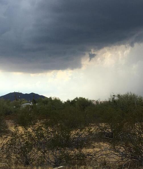 36 N. 12th St., Phoenix, AZ 85086 Photo 5