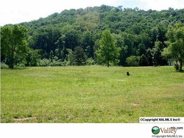 C Summerhill Dr., Guntersville, AL 35976 Photo 1