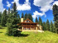Home for sale: 350 Blm Rd. 3008a, Powderhorn, CO 81243
