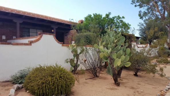 364 S. Paseo Lobo, Green Valley, AZ 85614 Photo 8