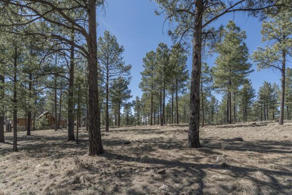 2431 E. del Rae Dr. #181, Flagstaff, AZ 86001 Photo 6
